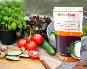 Organic The way to live Healthy food Packaging